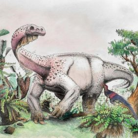 Two Feet or Four? A New Dinosaur, L. Mafube, Might Change Our Bipedal Timeline